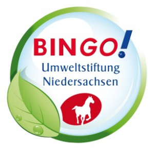 Bingo-klein